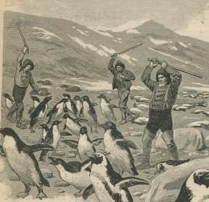 Bâton pour chasser